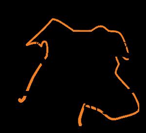 QDD Logo Orange
