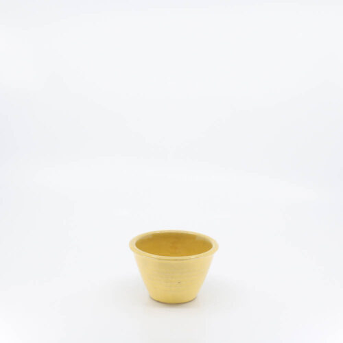 Pacific Pottery Hostessware UNK Custard Alt-Design Yellow