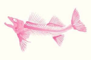 QwkDog Design Fish Skeleton