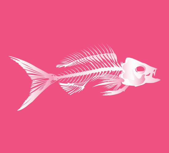 QwkDog Fish Skeleton - Pink Portfolio Image